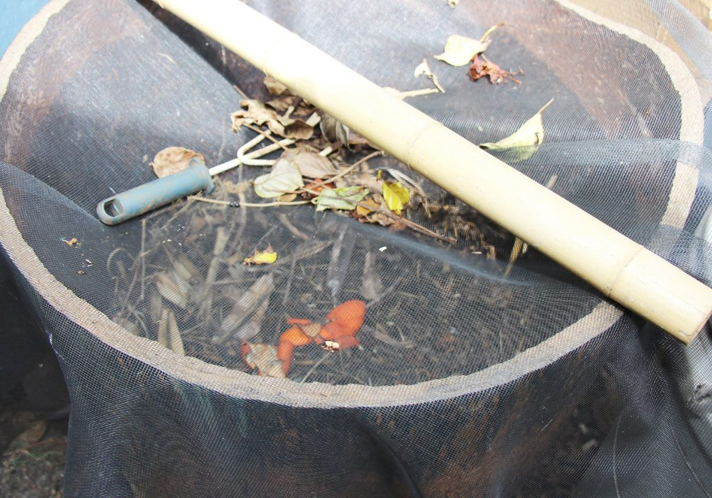 The compost container used to create mulch from dead leaves and food garbage.