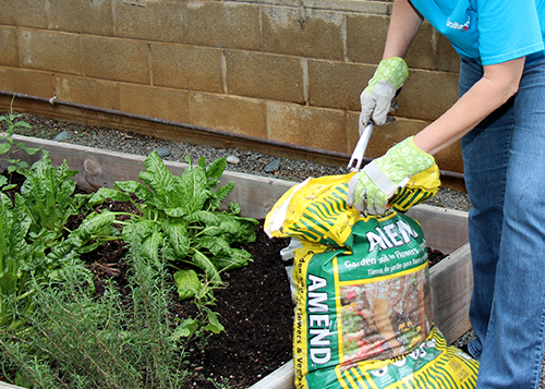 Refreshing the garden area at our Ka Pa Ola program location!